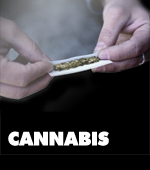 learn more about cannabis and its effects